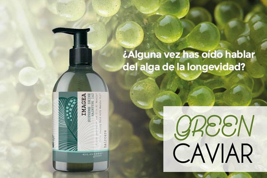 Green caviar tratamientos naturales para el cabello en sabadell